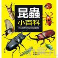 昆蟲小百科-兒童小百科(6)