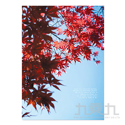 16K定頁筆記本(橫線)-秋序之韻 SS-10025-B08