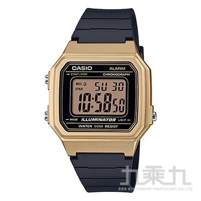 CASIO手錶 W-217HM-9AVDF