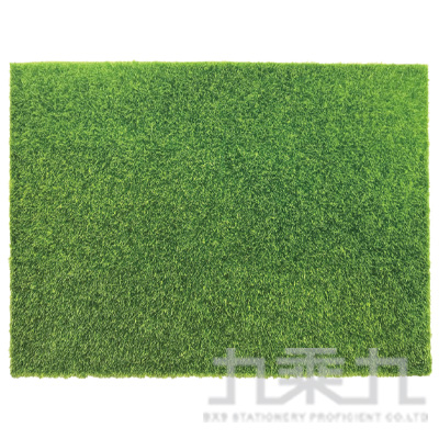 青睞 草皮裝飾墊(60x45cm) 9668210101