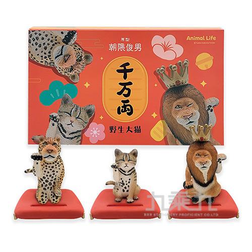 Animal Life 招財野生大貓2代