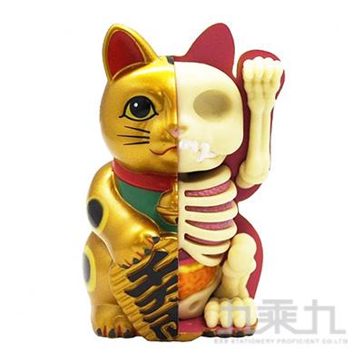 招財貓解剖(金色) FM29202