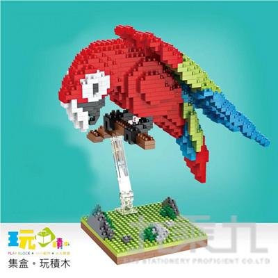 紅鸚鵡 16018