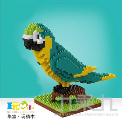 綠鸚鵡 16019