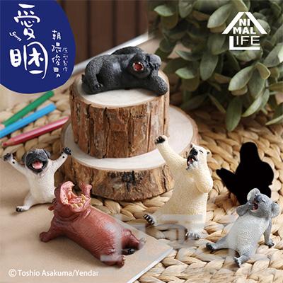 Animal Life愛睏 (款式隨機 恕不挑款)