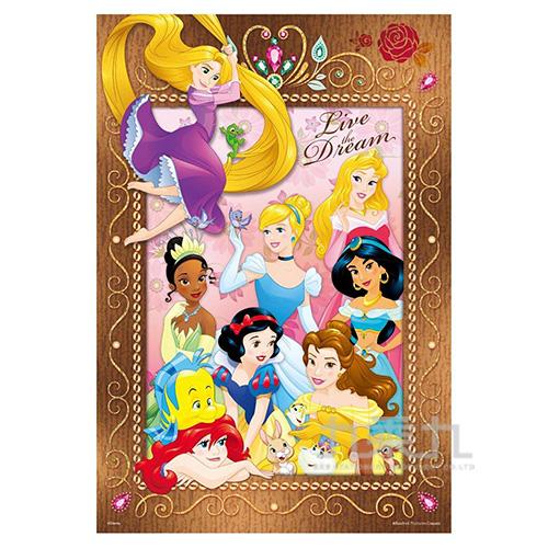 Disney Princess公主(6)拼圖300片