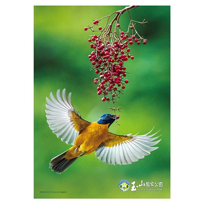玉山(鳥類系列)黃腹琉璃拼圖108片