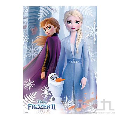 Frozen2冰雪奇緣2(1)拼圖300片HPD0300S-131