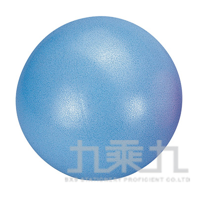 塑身韻律球20cm S3801