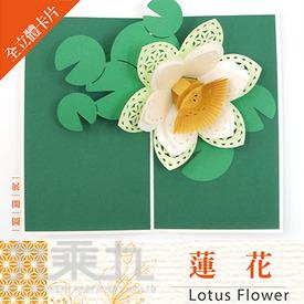 立體卡片 Lotus Flowe /蓮花 11*18