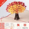 立體卡片 Maple Tree/楓樹 15*15